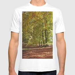 Autumnal beech trees in a natural woodland. Norfolk, UK. T-shirt