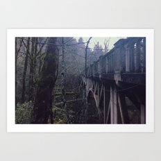 BRIDGE TO NOWHERE - landscape photography Art Print
