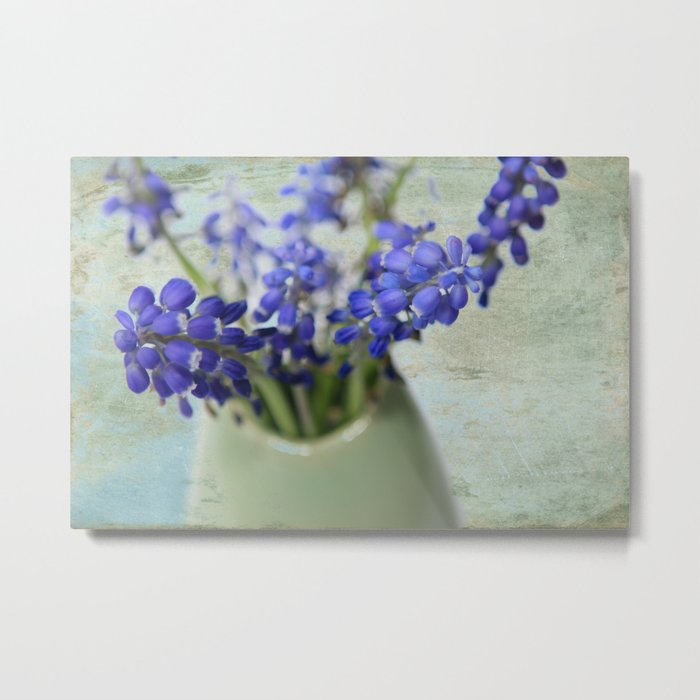 Grape Hyacinths Metal Print