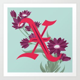 Letter 'X' is for Xeranthemum Art Print