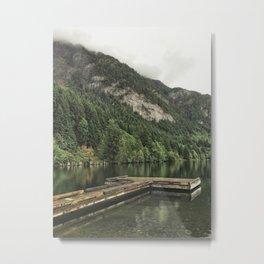 Horne Lake Metal Print