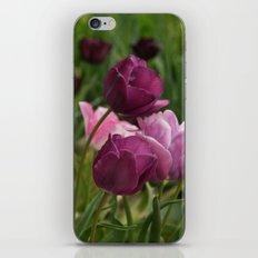 Shades of Burgundy iPhone & iPod Skin