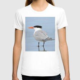 An Elegant Tern T-shirt
