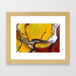 Fancy Jasper Framed Art Print
