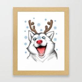 Husky Rudolph Framed Art Print