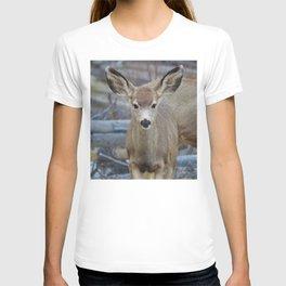 Mule deer in Jasper National Park | Canada T-shirt