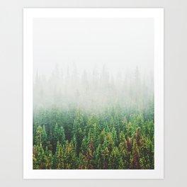 Misty Jasper Pine Forest Art Print