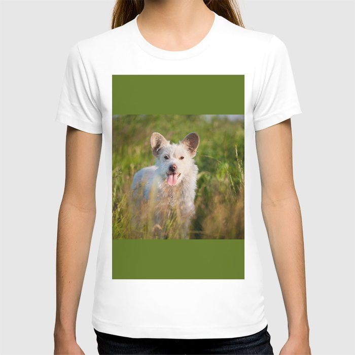 Single white stray tyke dog at the meadow T-shirt