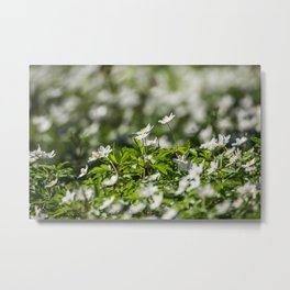 Flowers to Mum Metal Print