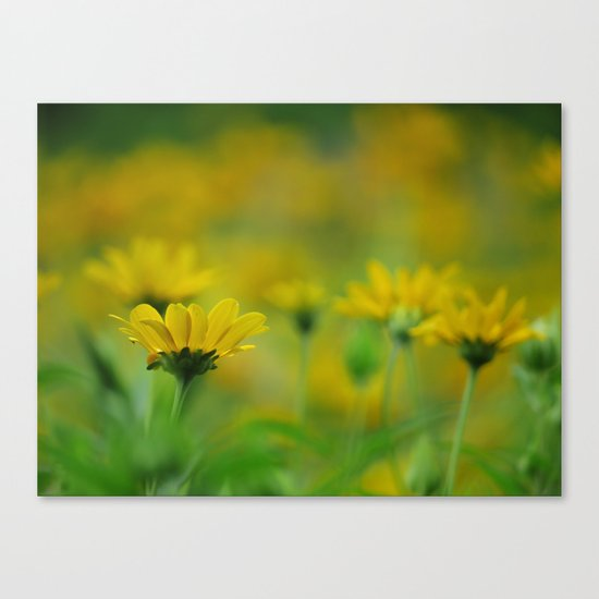 Blurs of Summer Canvas Print