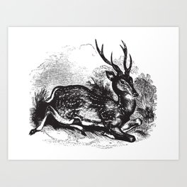 Vintage Hart Art Print