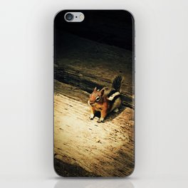 Cute Critter iPhone Skin