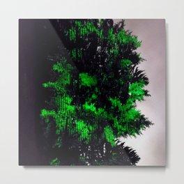 Arborvitae Metal Print