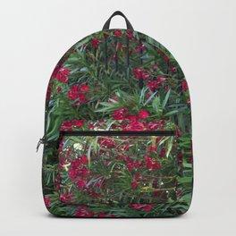 Oleandr Backpack