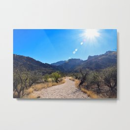 Catalina Metal Print