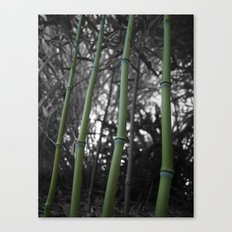 What Would You Do For Bamboo? Canvas Print