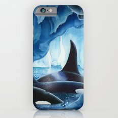 Killer Whales, Orcas Slim Case iPhone 6s