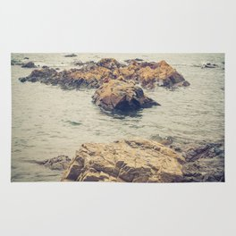 Rocks Into The Sea Rug