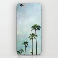 palm trees iPhone & iPod Skins featuring Palm trees by Sylvia Cook Photography
