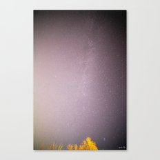 Seven Sisters near the Milky Way Canvas Print