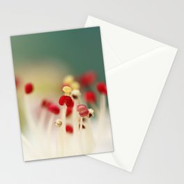 Flower Candy Stationery Cards