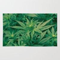 marijuana Area & Throw Rugs featuring Marijuana Plants  by Limitless Design