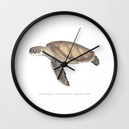 Green Turtle Wall Clock