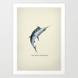 Macaira Nigricans - Blue Marlin Art Print