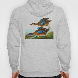 Blue Winged Teal John James Audubon Vintage Scientific Birds of America Illustration Hoody