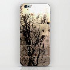 Tree Series 1 iPhone & iPod Skin