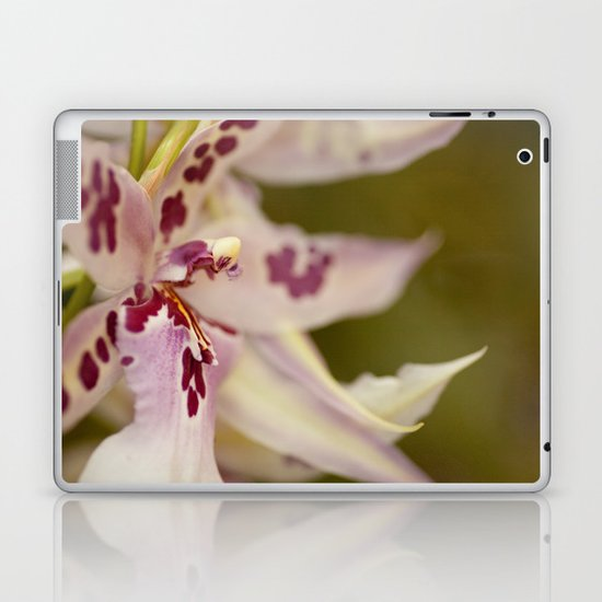 Cambria 5-8022 Laptop & iPad Skin