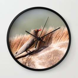 Oxpecker on a giraffe Wall Clock