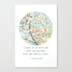 What the spring does to cherry trees Canvas Print