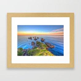 Nugget Point, Otago, New Zealand Framed Art Print