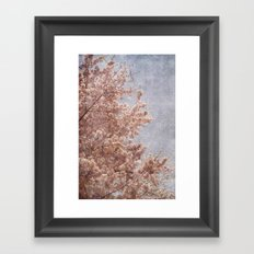 Beautiful Day - (pink cherry blossoms) Framed Art Print