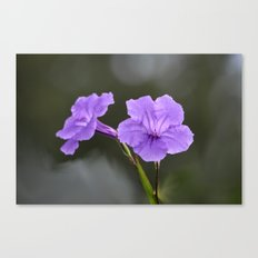 Flowerinas Canvas Print