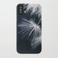 dandelion iPhone & iPod Cases featuring dandelion by Ingrid Beddoes