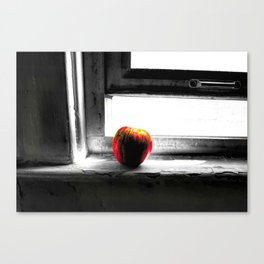 Life And Decay Canvas Print