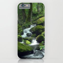 Summer Forest Brook iPhone Case