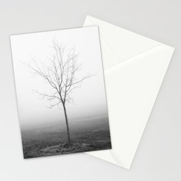 Fledgling Stationery Cards