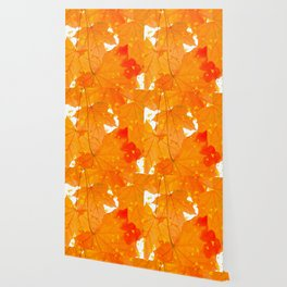 Fall Orange Maple Leaves On A White Background #decor #buyart #society6 Wallpaper