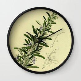 Botanical Rosemary Wall Clock