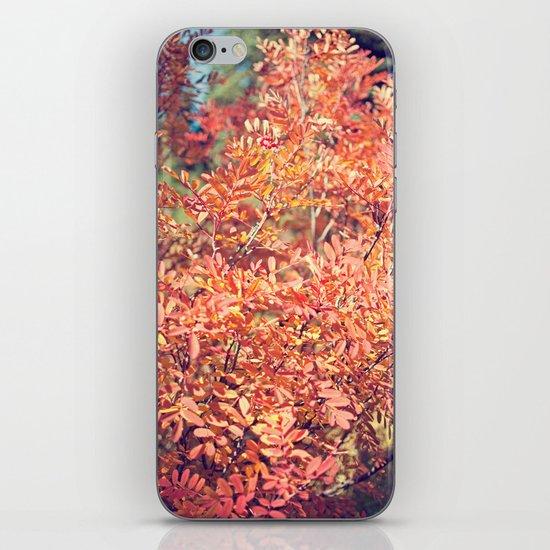 Red Fall iPhone & iPod Skin