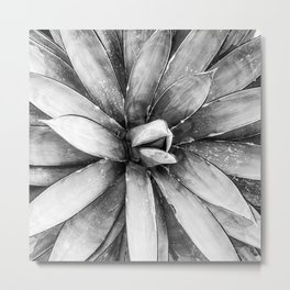 Cactus Decor // Black and White Succulent Leaves Desert Square Photograph Metal Print