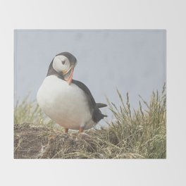 The shy puffin Throw Blanket