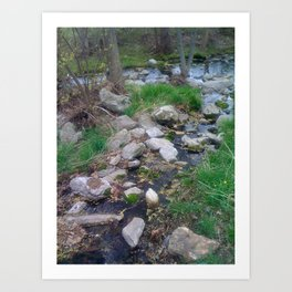 Little Creek on the Hiking Trail Art Print