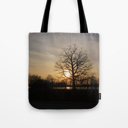 Ixonia Marsh Tote Bag
