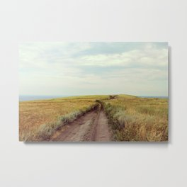 Rustic photography Country road photo Landscape print Nature poster Summer Metal Print