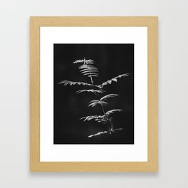 Nature Shots in Black and White. || Shadows. Forests. || Leaves. || Brunches. || Latvia. || Latvia Framed Art Print