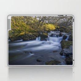 Nant Ffrancon Pass River Laptop & iPad Skin